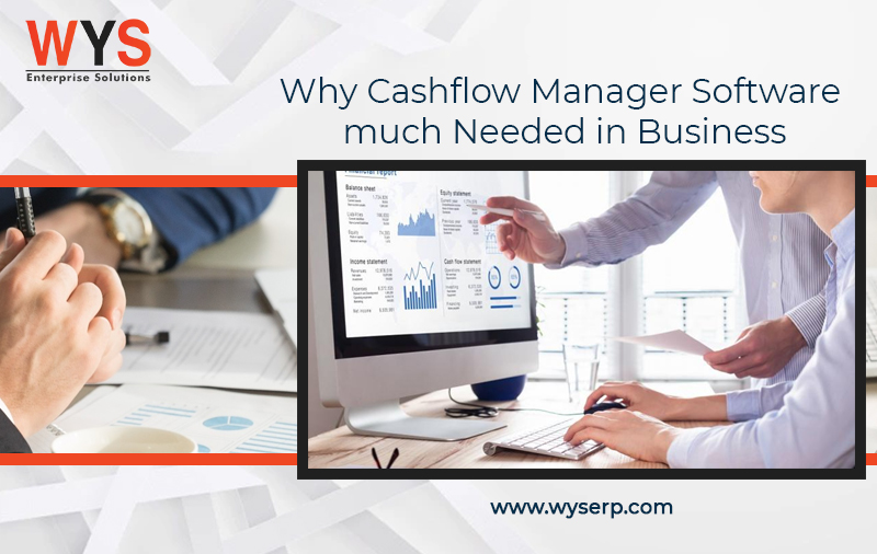 Why Is Cashflow Manager Software Much-Needed In Business